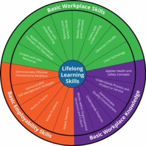 This is an image of the foundations skills framework wheel.